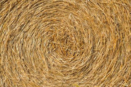 Straw texture background photo