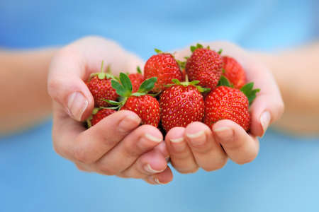 Close-up hands holding fresh strawberries photo