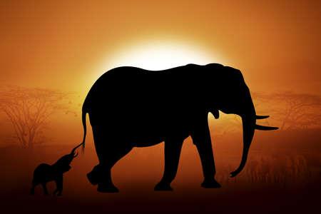 siluetas de elefantes: Siluetas elefantes contra la puesta de sol en África