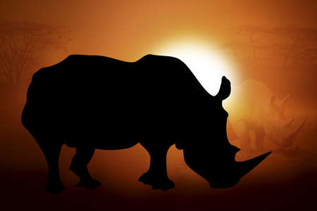 Silhouettes rhino against the sunset in Africa Stock Photo