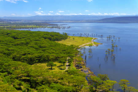 birdseye view: African landscape, birds-eye view on lake Nakuru, Kenya