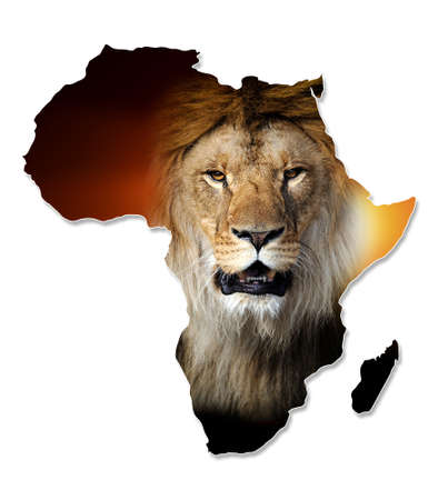 africa  wildlife: Africa Wildlife Map Design - Isolated on White
