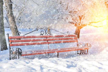 snow falls: Bench in winter park, snow falls, outdoor