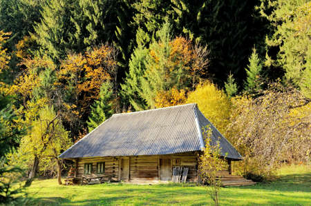 Wooden House with autumn forest