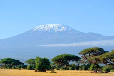 Amboseli의 킬리만자로 산 꼭대기 눈 스톡 콘텐츠