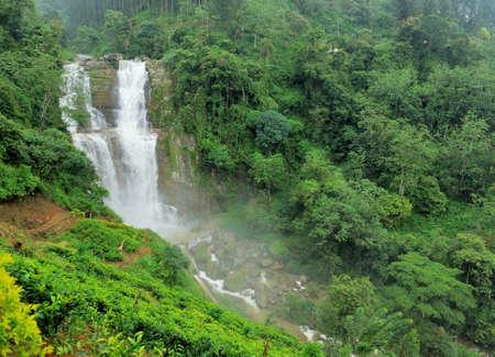 Beautiful Ramboda waterfall in Sri Lanka photo