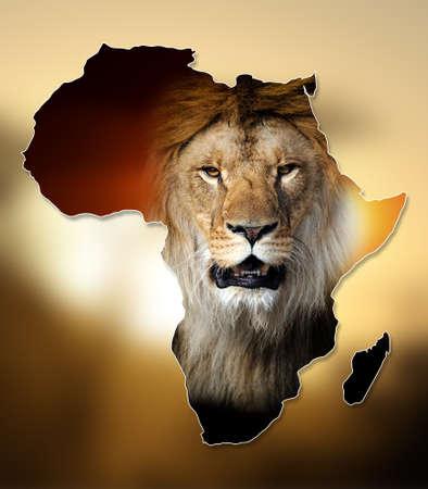 africa  wildlife: Africa Wildlife Map Design on dark backgroud