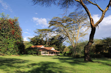 tourist resort: Tourist resort in a woods of Africa