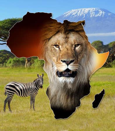 Africa Wildlife Map Design auf afrikanische Landschaft