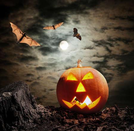 calabaza: Calabaza de Halloween (Jack-o-linterna) sobre fondo oscuro Foto de archivo