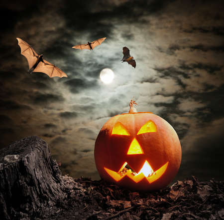 dynia: Halloween dyni (Jack-o-lantern) na ciemnym tle