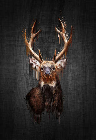 black tail deer: Portrait red deer on dark background. Paint effect Stock Photo
