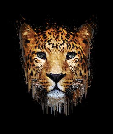 leopard: Close-up leopard portrait on dark background. Paint effect