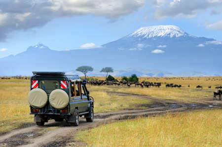 Safari unidad de juego con los ñus, Masai mara reserva en Kenia, África Foto de archivo - 48166954