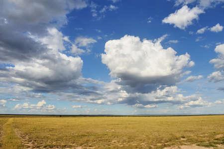 grassland: Dramatic cloud and the vast grassland of savannah