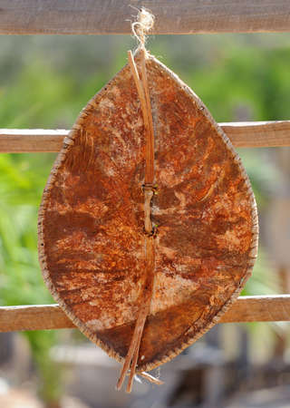tribu: escudo de cuero tribu en Kenia, �frica