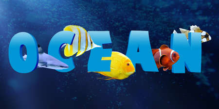 reef fish: Word OCEAN with many tropical reef fish Stock Photo