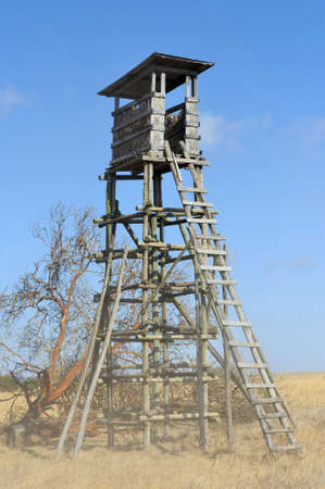 lookout: Lookout tower for hunting in savanna. Africa, Kenya
