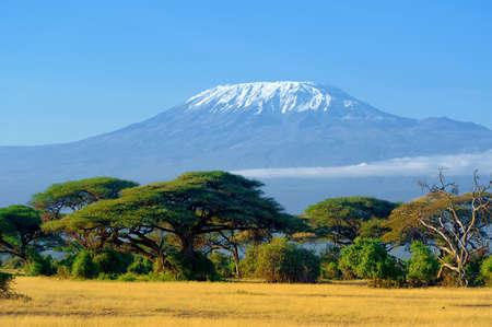 Nieve en la cima del Monte Kilimanjaro en Amboseli Foto de archivo - 63583001