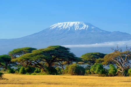 Snow on top of Mount Kilimanjaro in Amboseli Imagens - 63583001