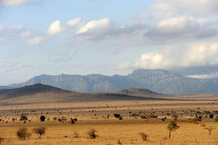 Savannah landscape in  Kenya, Africa