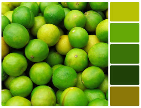 Lime texture. Colour palette with complimentary colour swatches Stock Photo