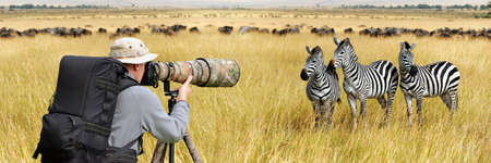 Professional wildlife photographer on safari. Zebra shot