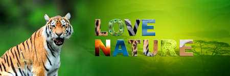 Banner with tiger and text Love Nature with texture Stockfoto