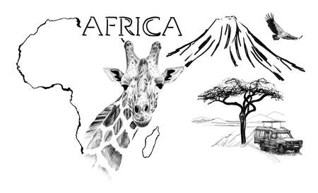 Giraffe portrait on Africa map background with Kilimanjaro mountain, vulture and car. Collection of hand drawn illustrations (originals, no tracing) Foto de archivo - 136527096