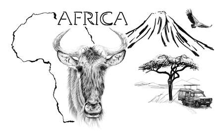 Wildebeest portrait on Africa map background with Kilimanjaro mountain, vulture and car. Collection of hand drawn illustrations (originals, no tracing) Foto de archivo - 136527102