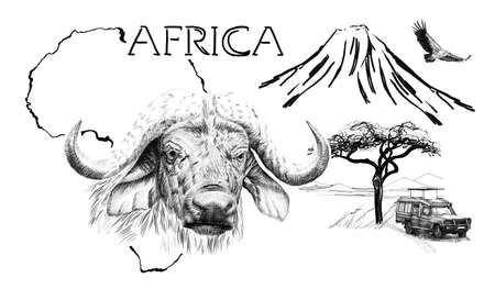 Buffalo portrait on Africa map background with Kilimanjaro mountain, vulture and car. Collection of hand drawn illustrations (originals, no tracing) Foto de archivo - 136529287