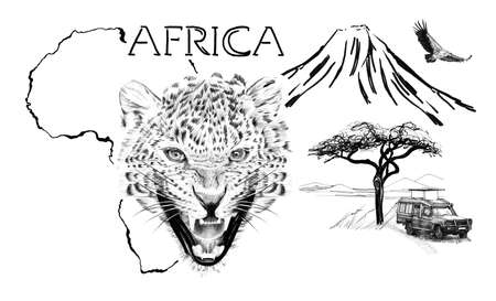 Leopard portrait on Africa map background with Kilimanjaro mountain, vulture and car. Collection of hand drawn illustrations (originals, no tracing) Foto de archivo - 136529295