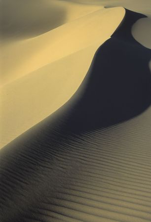 closes up of sand dune