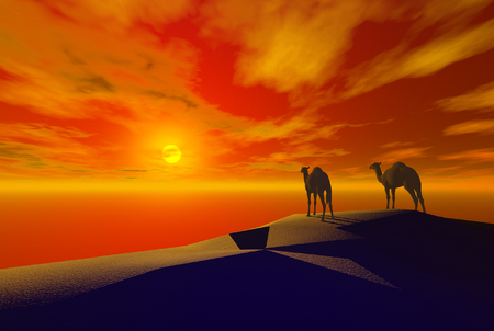 3D render of camel Stock fotó