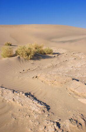 sand dunes in Death Valley Banco de Imagens