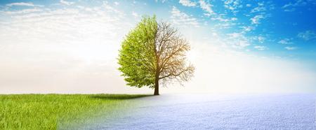 Sprimng winter change Stock fotó