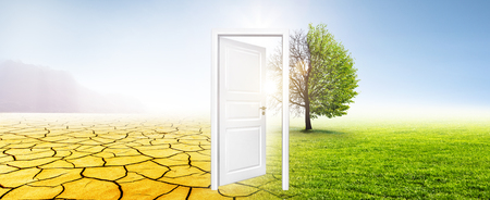 Door in Meadow with Tree Banque d'images - 115924289