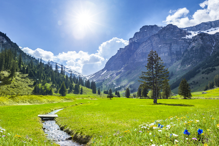 Beautiful Swiss Landscape in Springtime