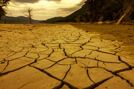 Cracks in dry earth in a lake without water