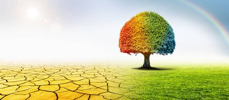 Colorful tree in a desert and a green meadow in climate change