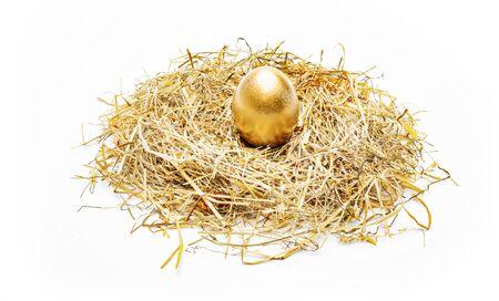 Golden egg in the nest Stok Fotoğraf