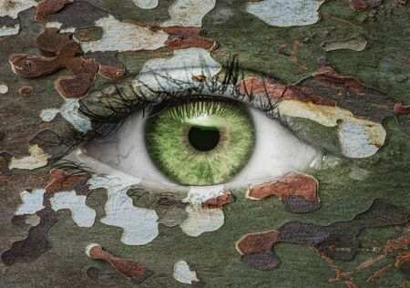 Green eye with camoflage pattern