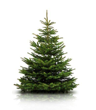 Gedecoreerde kerstboom met kerstballen Stockfoto