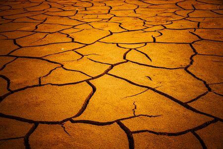 Cracks in dry soil