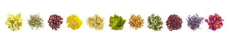 Various herbs on white background as banners