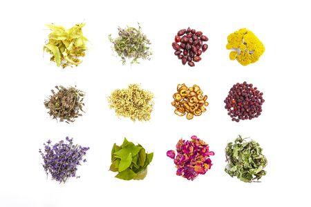 Various herbs on a white background Reklamní fotografie