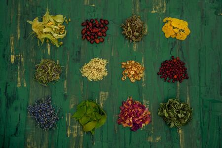 Different herbs on green background