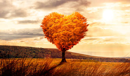Heart shaped tree in a surreal landscape at sunset