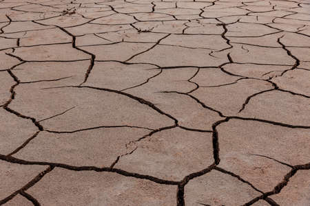 Cracks in a dry ground