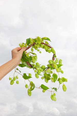 Hop wreath in one hand against light background